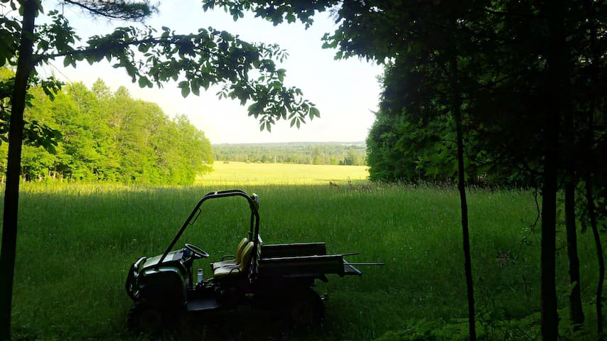 The view from the cabin