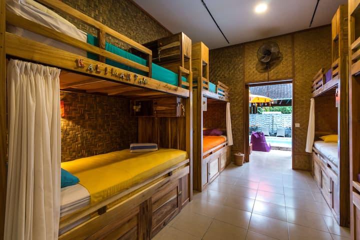 Sleepy Croc Luxury Hostel Bed in Female Dorm