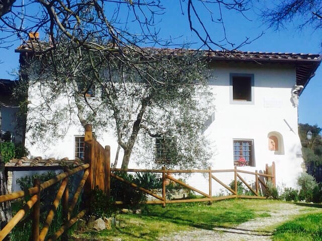 Charming country house in Florence, Iris