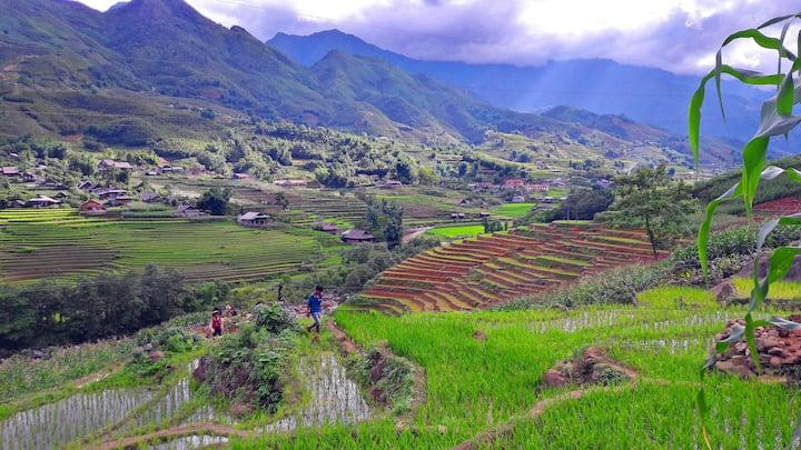 Local Hmong Homestay