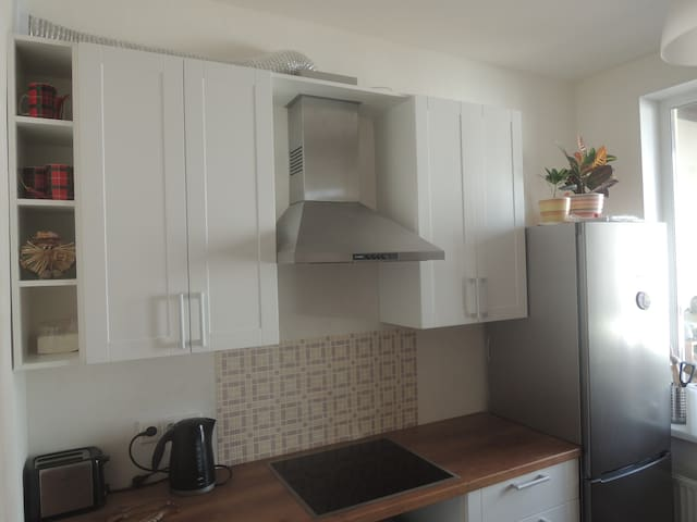 Excellent , inexpensive apartment - Kudrovo - Apartemen