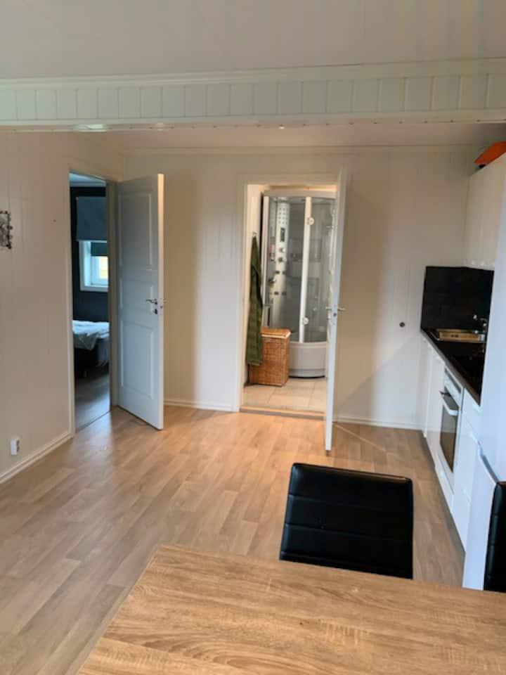 Ny og fin leilighet ved Hamar