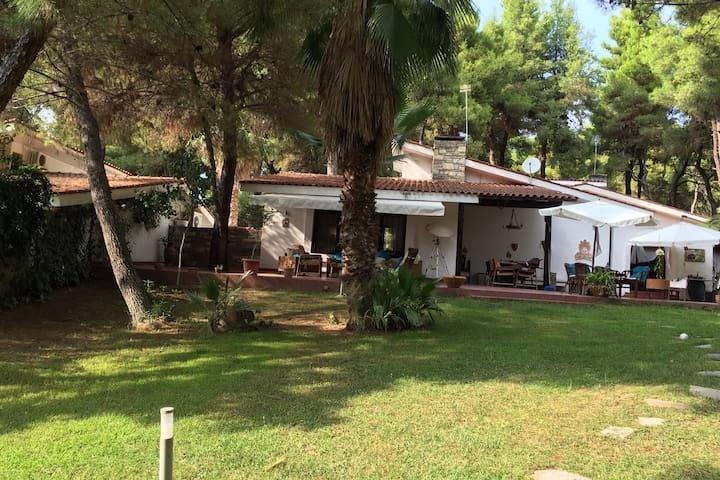 DImitra Villa Sani