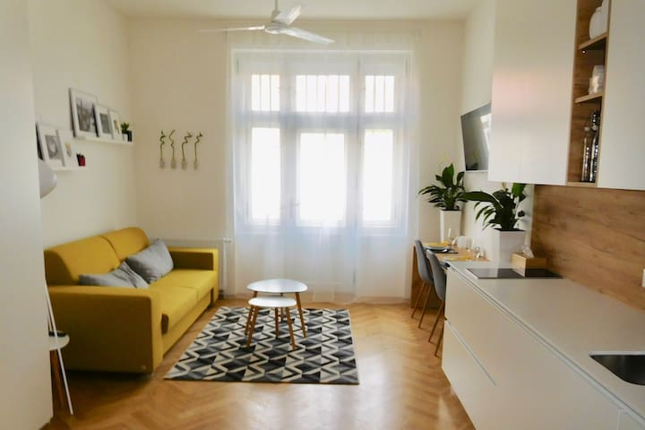 Bright Modern Apartment - Enjoy Prague at its Best