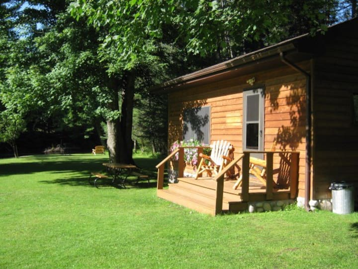 Jims Cabin on AuSable River with AC and WIFI