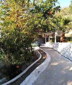 House with beautiful garden in Plomari