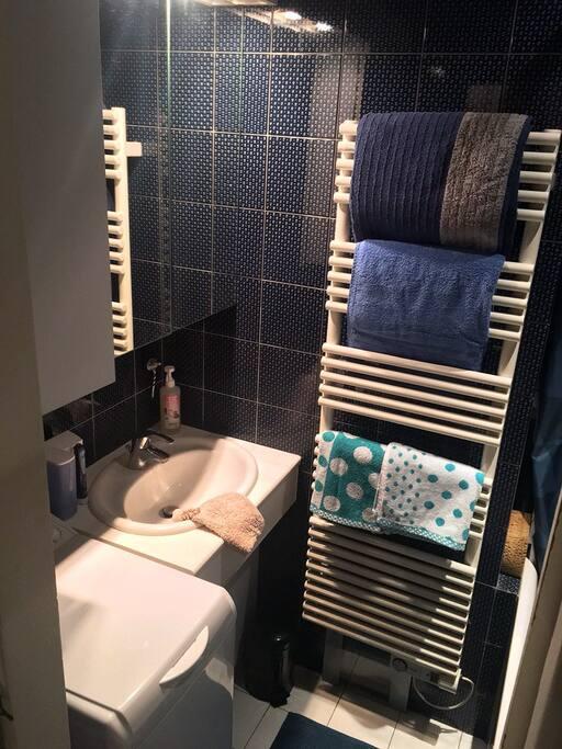 Salle de bains (bathroom)