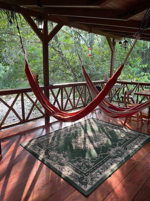 Birders Paradise by the river, Ecuadorian Chocó