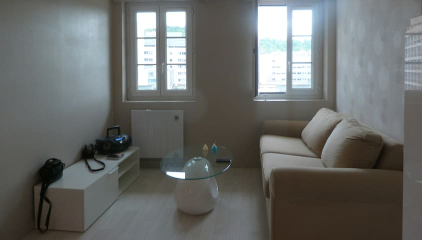 agreable appartement centre rouen - Rouen - Apartment