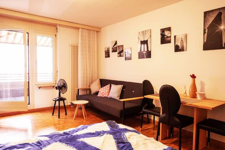 Studio Apartmen-City Centre-Basel (SVS– 36-303)