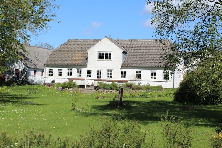 Kirkenygård, Vindblæs