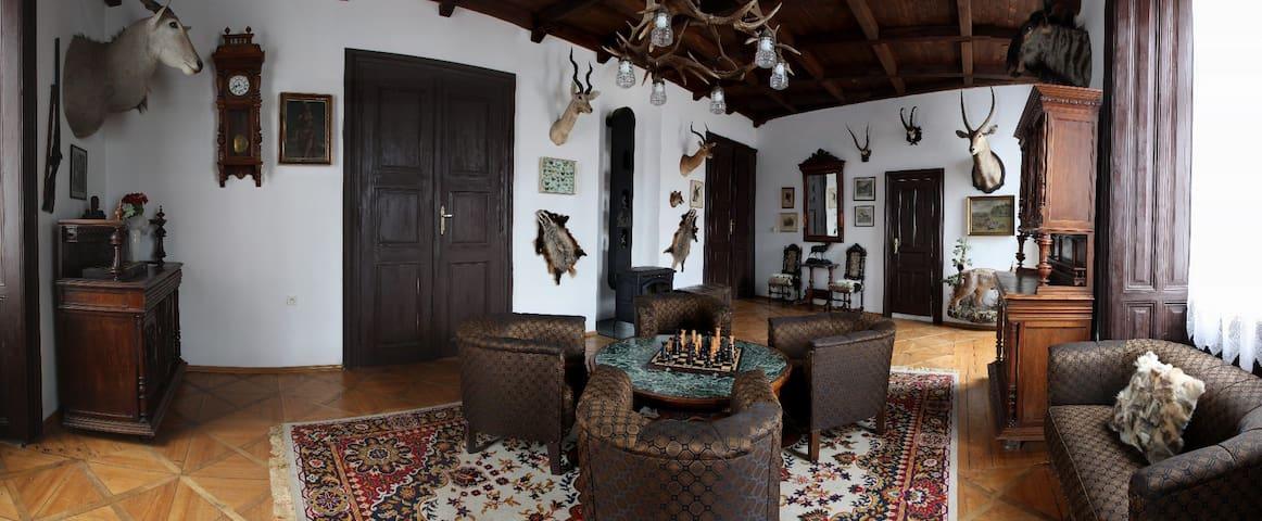 Hunter's suite - living room