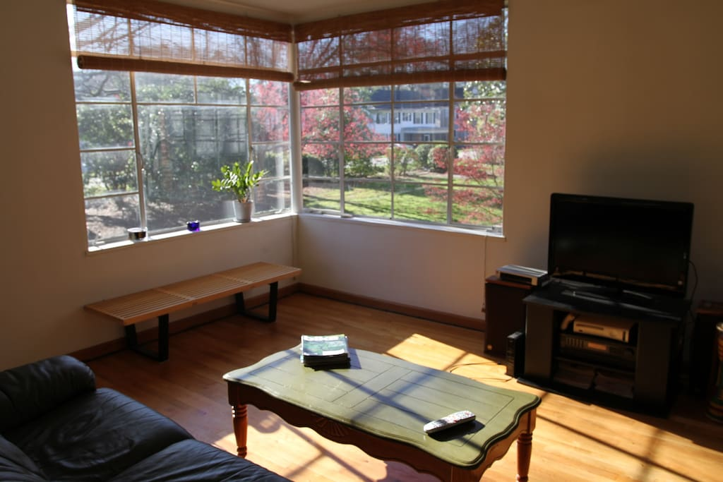 lots of nature light in spacious living room with corner windows and courtyard view
