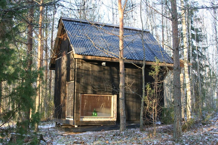 A cabin in the forest - Päka - Cabaña