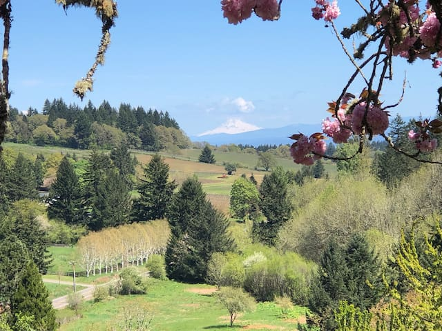 Willamette Valley Salem Oregon Luxury Farm Stay