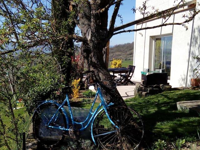 """au vélo bleu"" - Flat - Dom"
