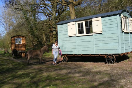 Waydown Shepherds Huts - Pyecombe - Barraca