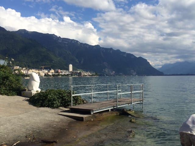 Spacious lovely apartment, footsteps to the lake. - Montreux - Pis