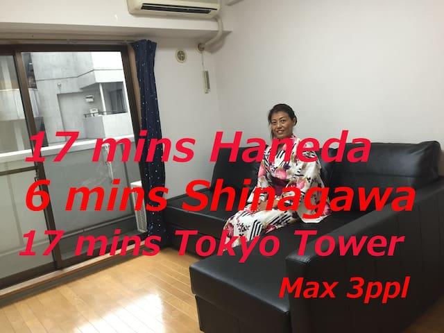convenient around Tokyo and quick Yokohama - Shinagawa