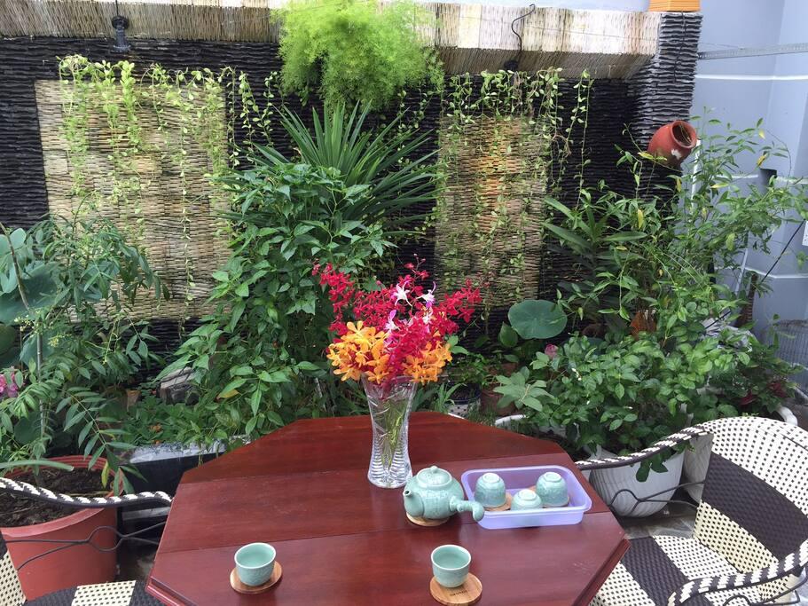 Roof garden breakfast