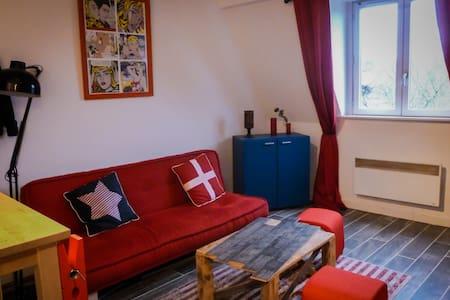 Duplex de charme proche citadelle - Lille - Wohnung