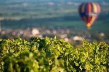 Au Coeur Du Pays Des Vignes : BEAUNE/VIGNOLES