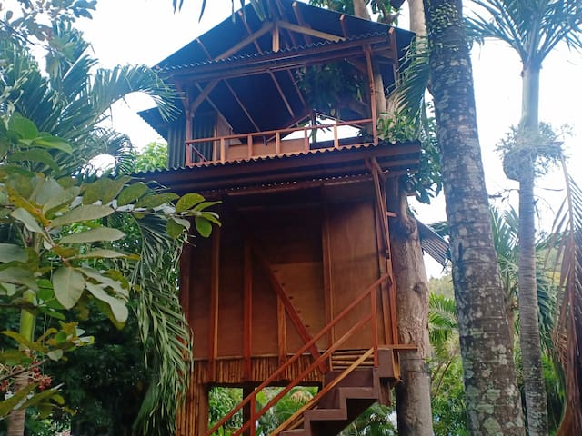 Private tree House walking Distance to the Beach,