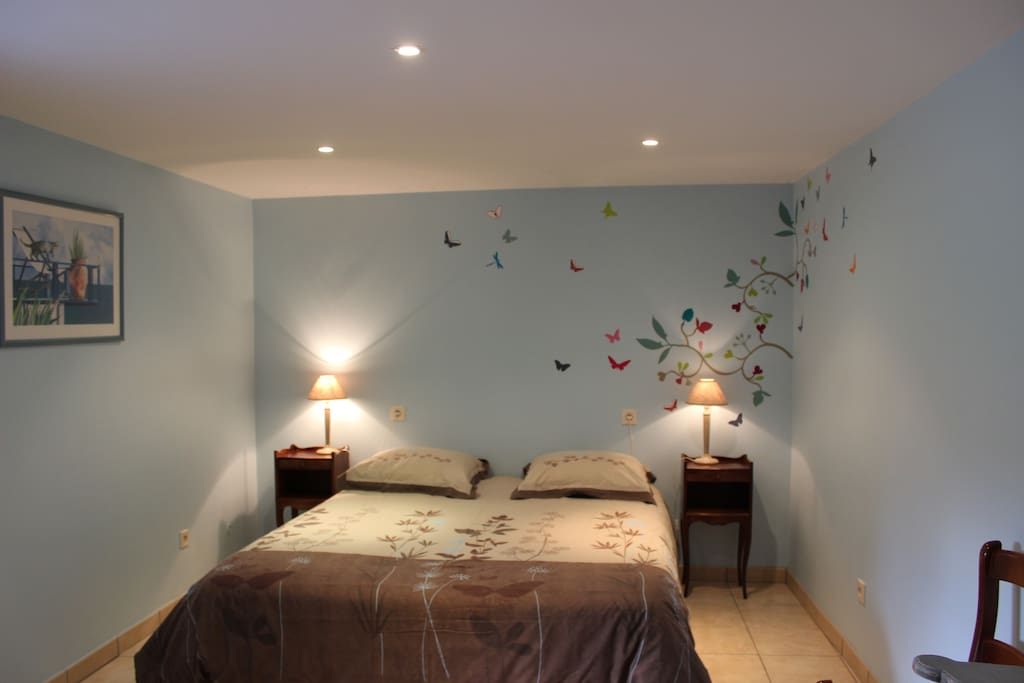 Chambre 2 papillon