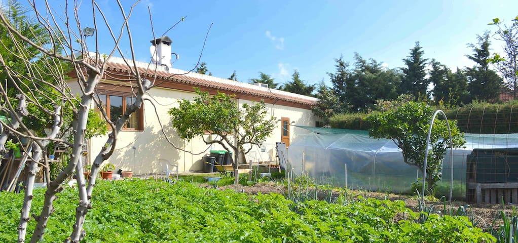 Tarifa Natural Surf Club whole House 6 rooms - Malaga - Villa