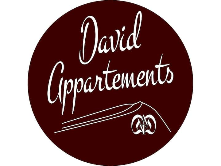 David Appartments - Single Bed Room Exklusiv