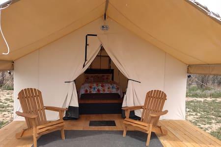 Glamping Tent at Wildland Gardens