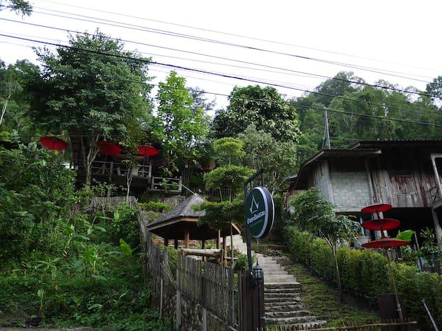 แม่กำปองโฮมสเตย์ บ้านระเบียงดอยเชียงใหม่ - Chiang Mai