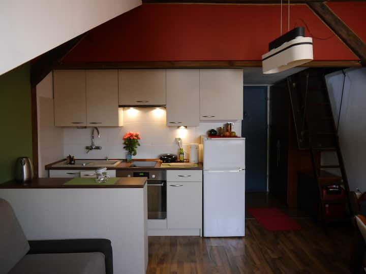 Independent and Cosy Loft (Traugutta street)