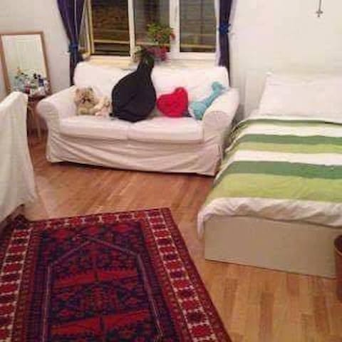Clean tidy room for female-Single room