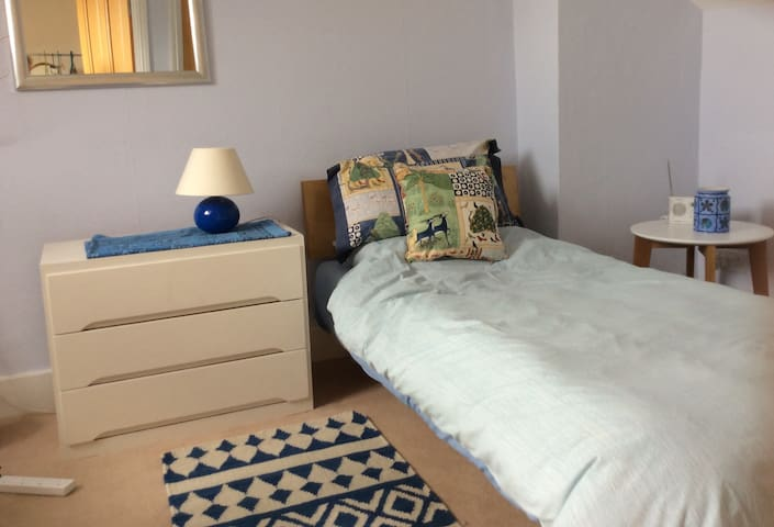 Single attic rm +ensuite+ parking available - Londres - Bed & Breakfast