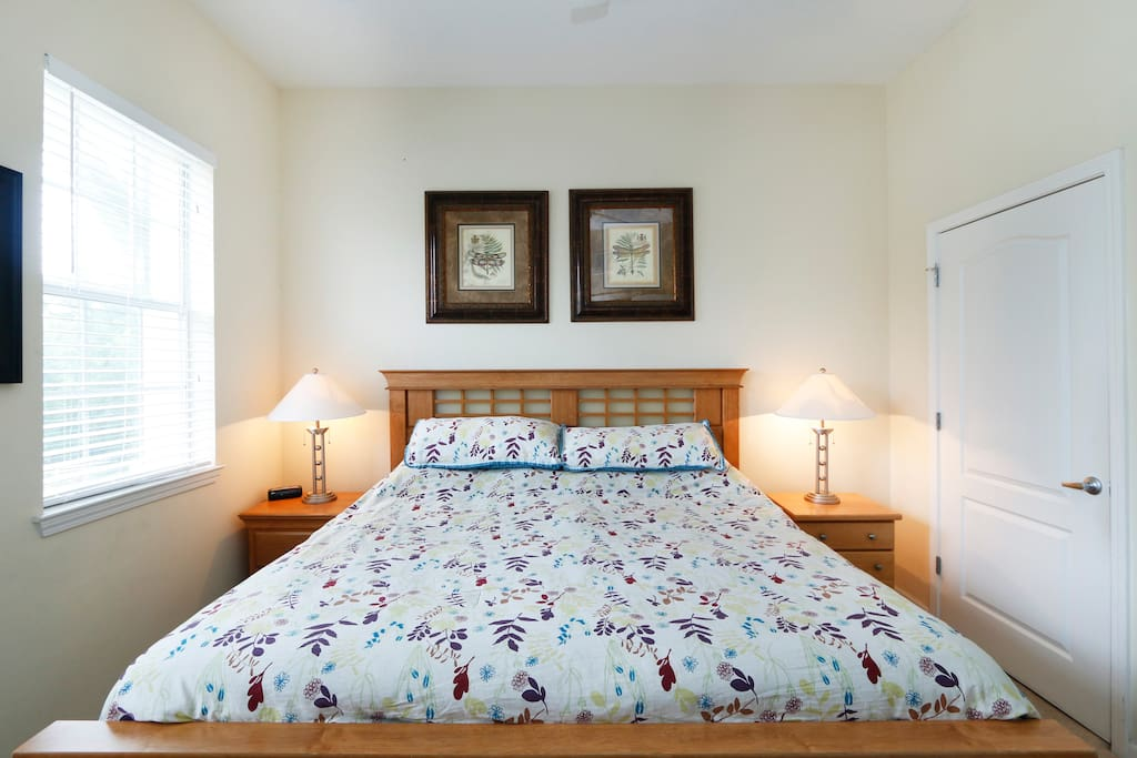 Master bedroom with King Size bed, walk in closet