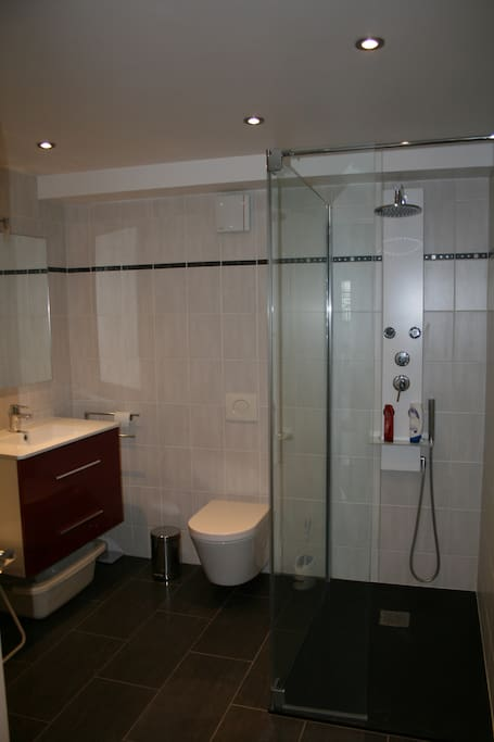 Salle de bain équipée d'une douche, de toilette, serviettes, papier toilette , shampooing et bain douché