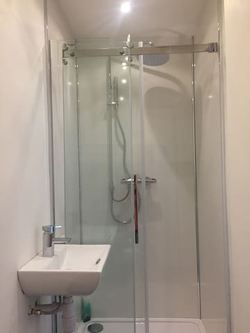 Raindrop shower in spacious shower cubicle.