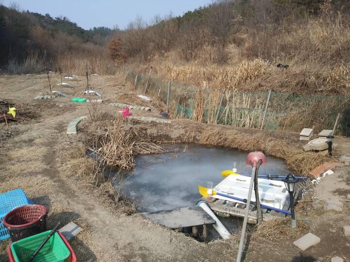 Kim's farm 반자연인체험이나 농장캠핑