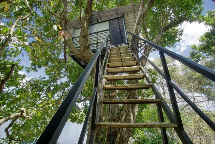 Yuhibuhi Forest Resort- Tree House