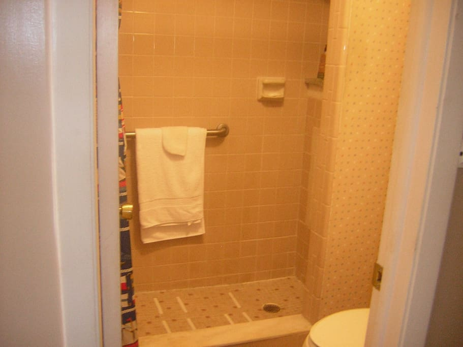 Walk in shower with grab bars in Master Suite plus a sit down stool.