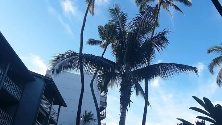The 4 Palms