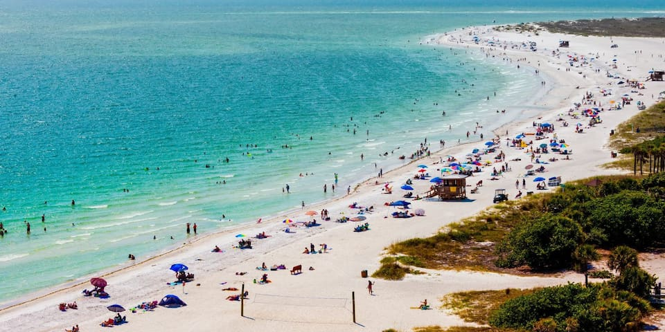 Voted the No. 1 Beaches -  Clearwater Beach- St. Pete Beach- Honeymoon Island, Caldesi Island, drive to or take the ferry or the Jolly Trolley to any of these locations. All have awesome beaches with sand that feels like sugar.
