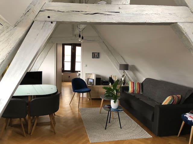 Appartement de charme en centre ville pour 2 mois