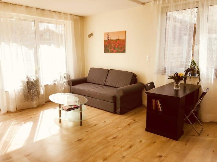 Schickes helles 55qm Apartment - Bad Wilhelmshöhe