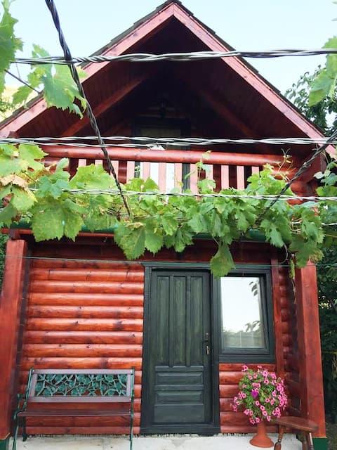 Holiday Village Ostrog (cozy bungalow 1)