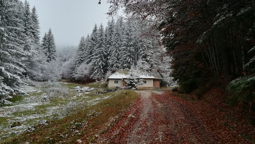 Cabana Pietricica -Transylvania Romania