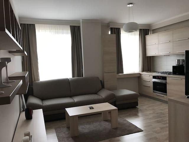 Friendly apartment - Cluj-Napoca - Apartemen