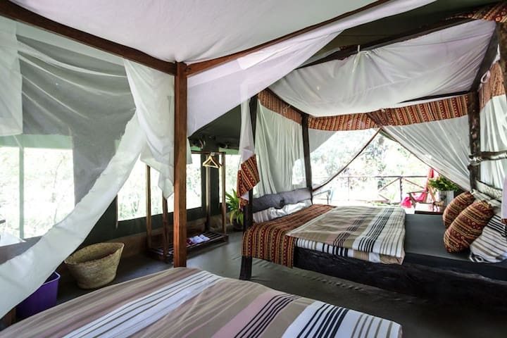 Aruba Camp-Luxury tent  Masai Mara /Talek river