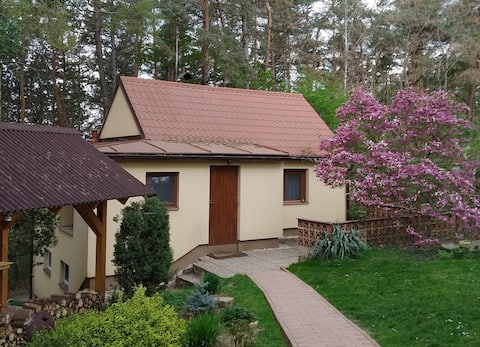 Guest apartment on the nature near Prague